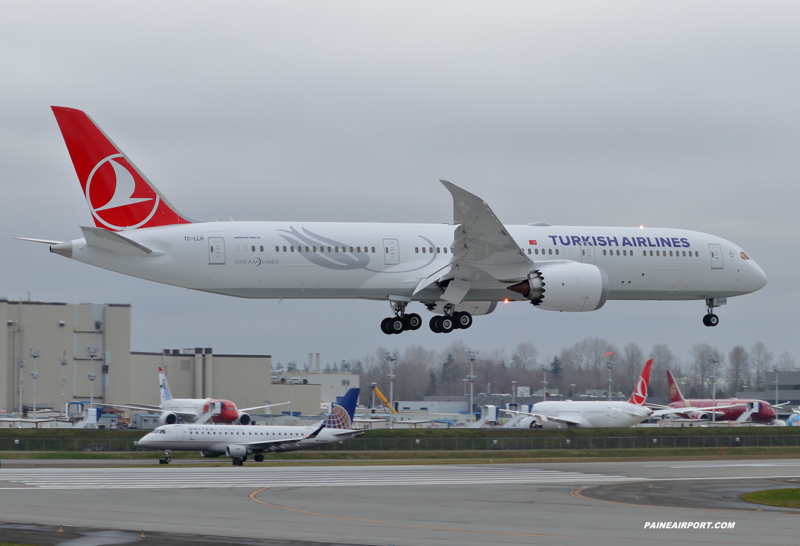 Turkish Airlines 787-9 TC-LLH at Paine Field